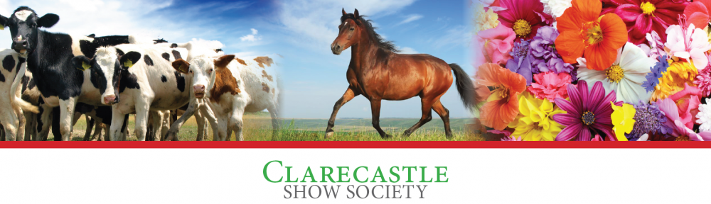 Clarecastle Show Society